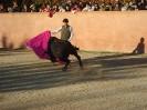 Fiesta Campera_19