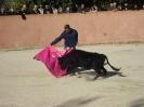 Fiesta Campera_22