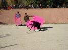 Fiesta Campera_28
