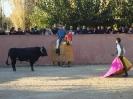 Fiesta Campera_34
