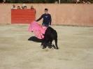 Fiesta Campera_35