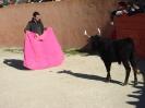 Fiesta Campera_3