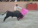 Fiesta Campera_56