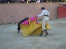 Fiesta Campera_61