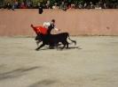 Fiesta Campera_67